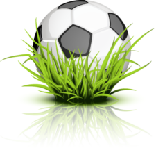 soccer_ball_grass