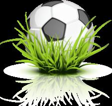 soccer_ball_grass